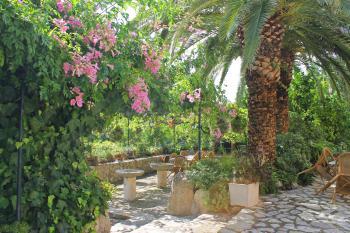 Grillecke und weitläufiger Garten