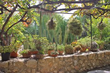 Weitläufige Gartenanlage neben der Grillecke
