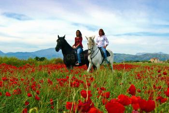 Reiterferien auf Mallorca