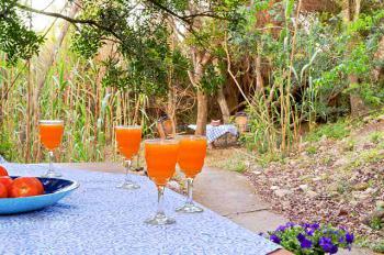 Garten und Terrasse der Finca