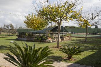 Blick zum Patio und dem Tennisplatz