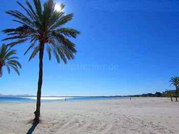 Strandurlaub Mallorca - Playa de Alcudia