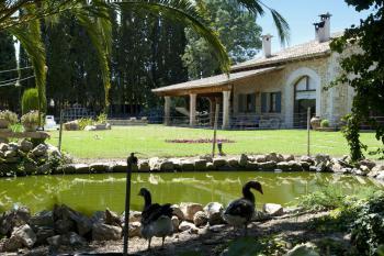 Großer Garten mit Teich