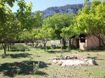 Finca-Grundstück mit Schafen