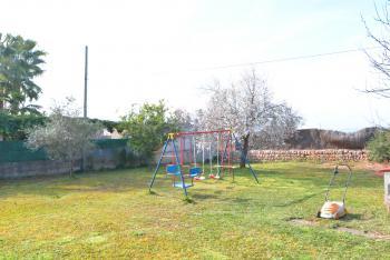 Großer Garten mit Schaukel