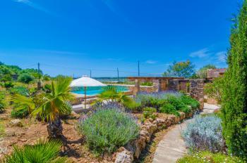 Pool, Garten und Terrasse
