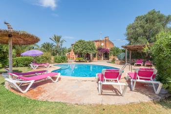 Garten und Sonnenterrasse zum Relaxen