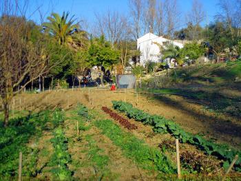 Bio-Gartenbau