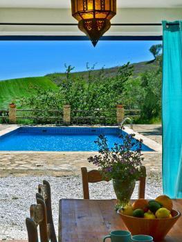Blick auf Pool und Terrasse