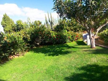 Gepflegtes Gartengrundstück