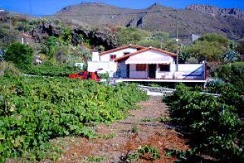 schönes Ferienhaus Teneriffa West bei Los Gigantes - die Aussenansicht
