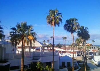 Strandnahe Ferienwohnung - Costa Adeje