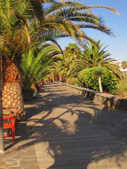 Promenade in La Caleta