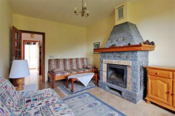 Wohnraum mit Kamin und Schlafcouch