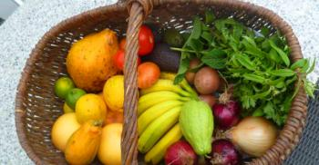 Bio Obst und Gemüse