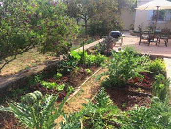 Gartenterrasse und Gemüsebeet
