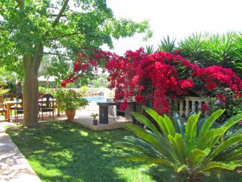 Grillecke, mediterraner Garten und Pool